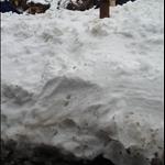 snow day 013.JPG