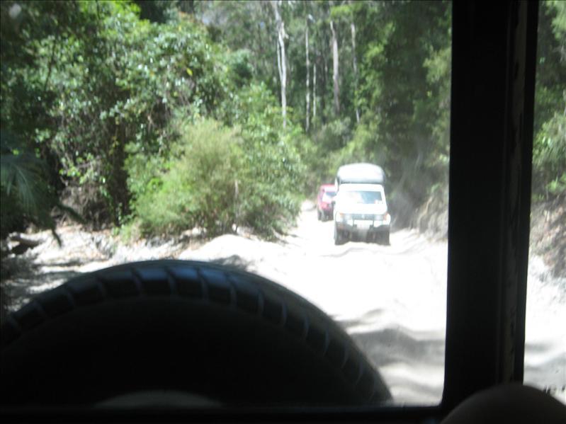 Fraser Island rainforest drive