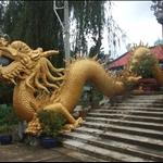 Vietnam to Cambodia to Koh Samui