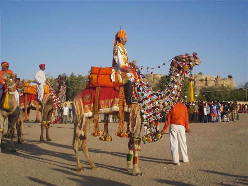 Camel show Jaisalmer