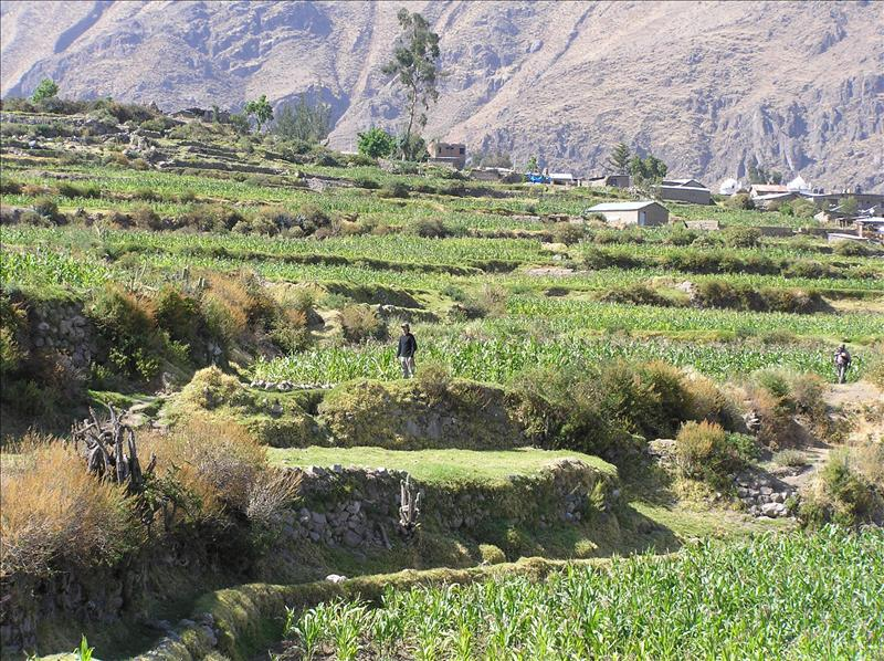 Starting our Colca trek from Cabanaconde