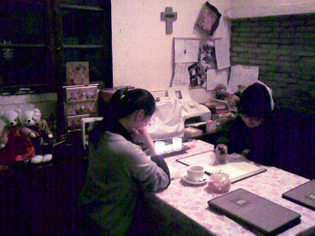 泰迪之家的阁楼  用手机拍摄 (爱拍网 http://ipai.cn/photologs/4228)