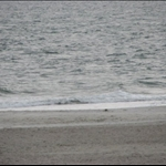 Fort Pulaski and Tybee Island - Album #1
