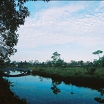 Ngao National Park