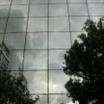 greyreflection