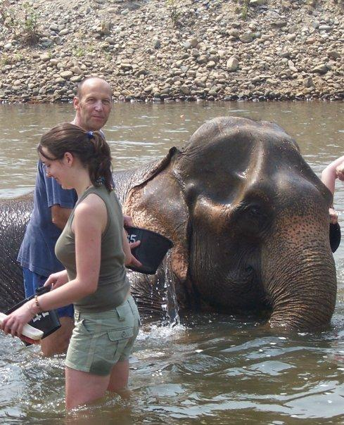 ELEPHANT NATURE PARK, MAE TAENG, CHIANG MAI - A WASH AND BRUSH UP