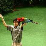 BirdPark-15.jpg