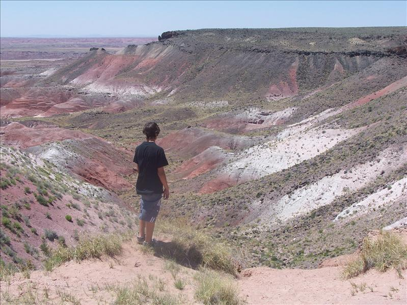 Isnt' the painted desert pretty?