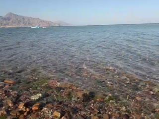 2012 0227 - 0109 dahab beach.mp4