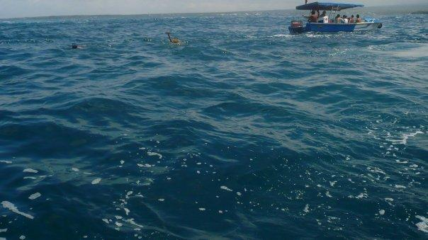 haciendo snorkeling x'ahi :b