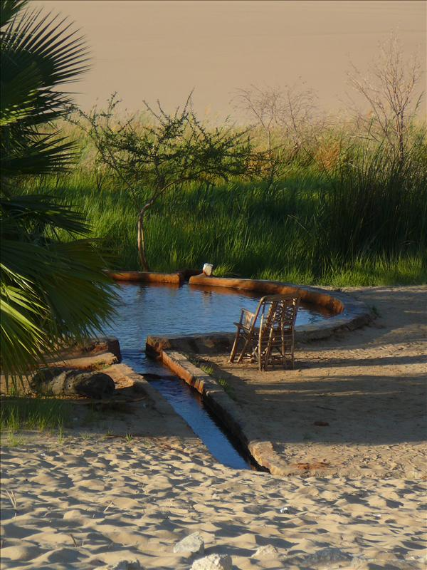 "Siwa - Woestijn ""Hot Spring"" 2"