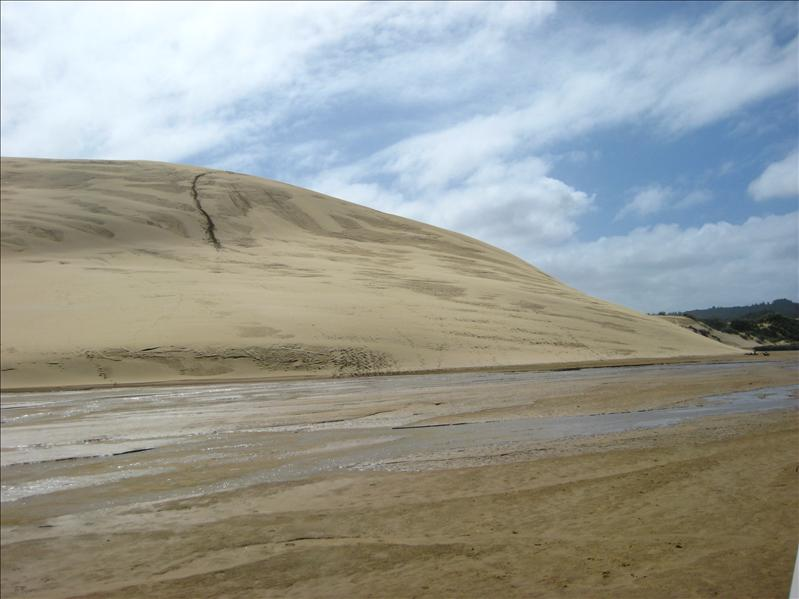 The huuuuge sand dunes at 90 mile beach - we slided down these motherf*ckers :D