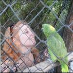 09_ap_birds10.jpg