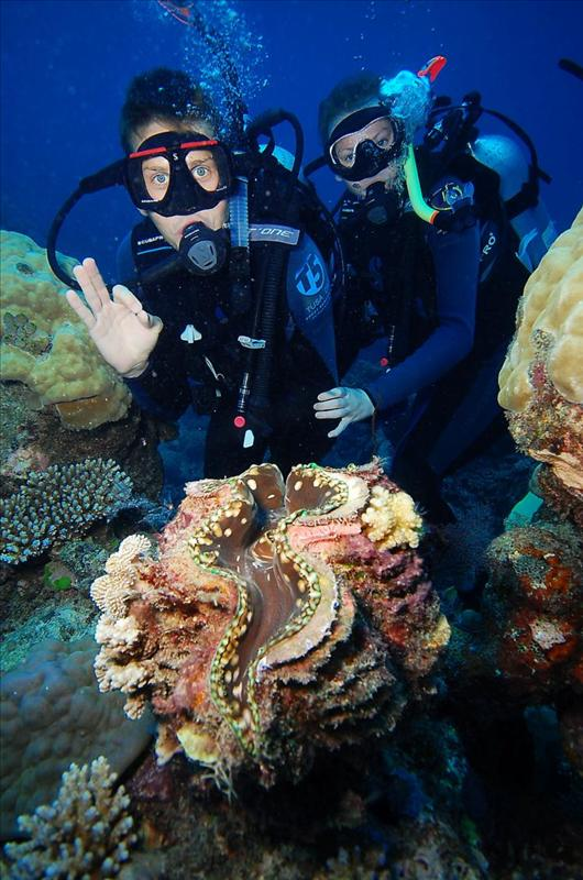 Our first scuba dive, on the Great Barrier Reef.
