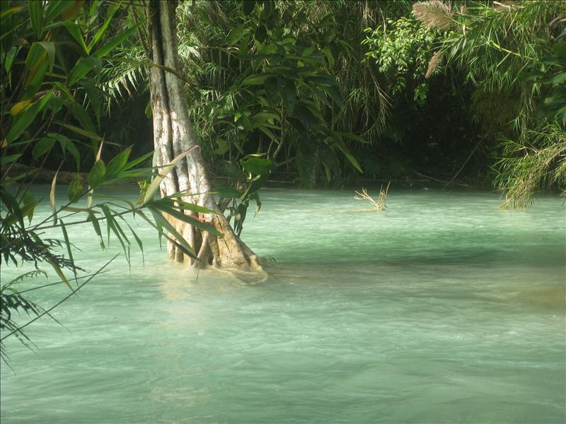 Turqoise, green water