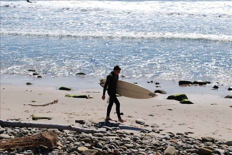 Ventura Surfer
