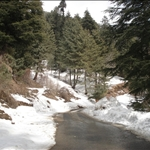 Shiny Road After Snow Fall.JPG