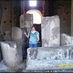 Among the ruins.JPG