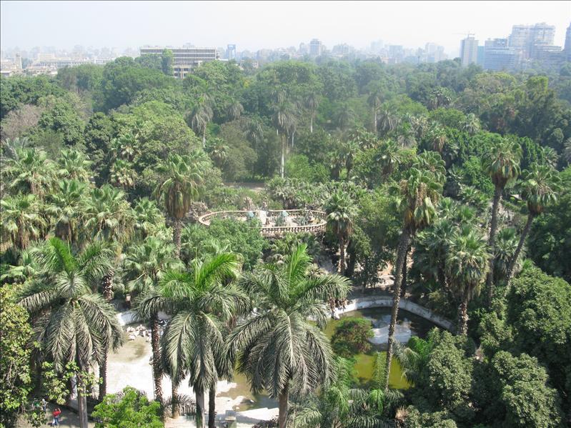 Cairo : de zoo