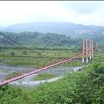 爆長的吊橋.jpg
