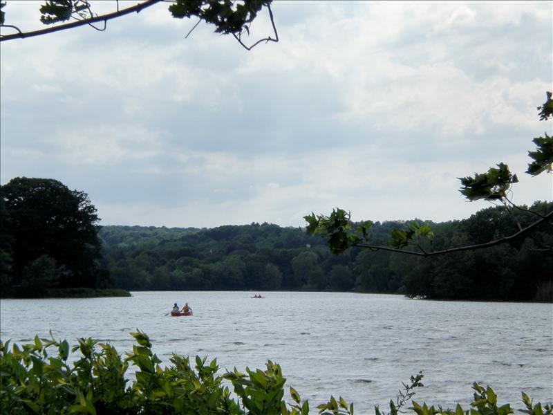 spy pond