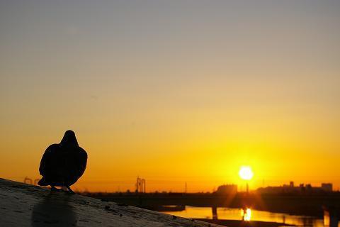 look at sunrise