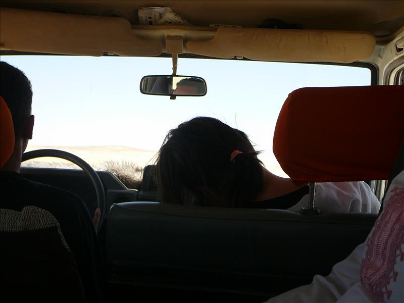 Nikki...steeds dichter bij de bestuurder