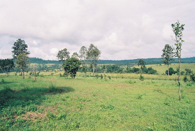 Thung Salaeng Luang National Park