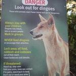 Fraser Island•2007