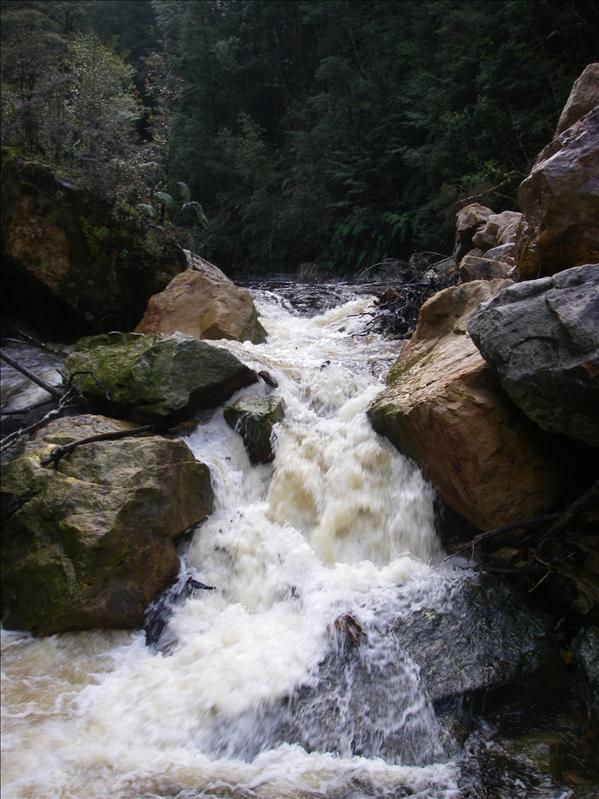 The first slip. At higher flows it goes but at this level there was way too much wood in there to consider running it.