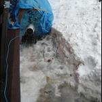snow day 011.JPG