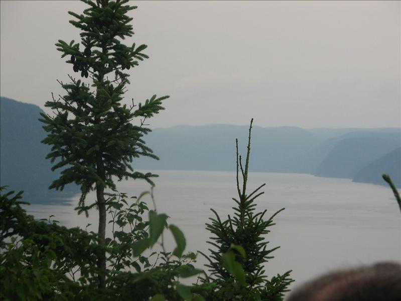 Independence !Quebec ! 028.jpg