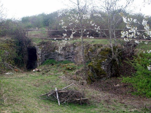 疑似洞穴的地方,周圍還有很多兔便便