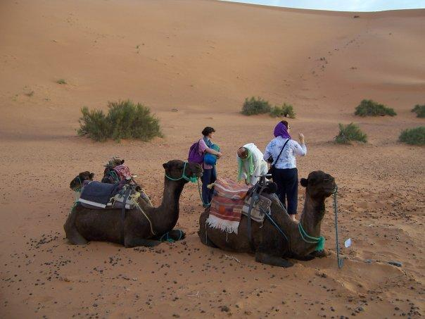 CAMEL RIDING AT MERZOUGA