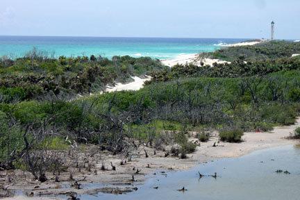 À gauche les eaux transparentes, et à droite les crocos!