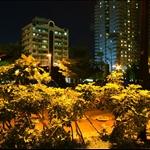 台北, 天母 運動公園