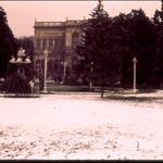 Palacio Nevado
