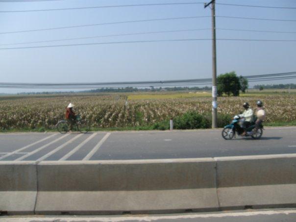 Vietnamese landscape.