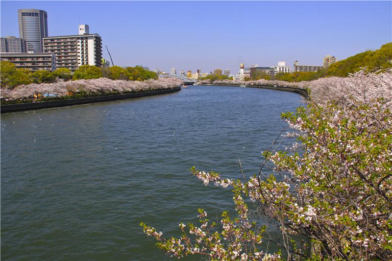 Sakuranomiya, Okawa River
