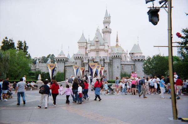 The DL Castle