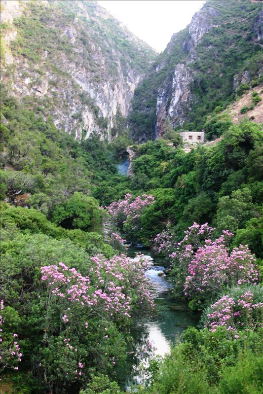 Oued Farda near God's Bridge