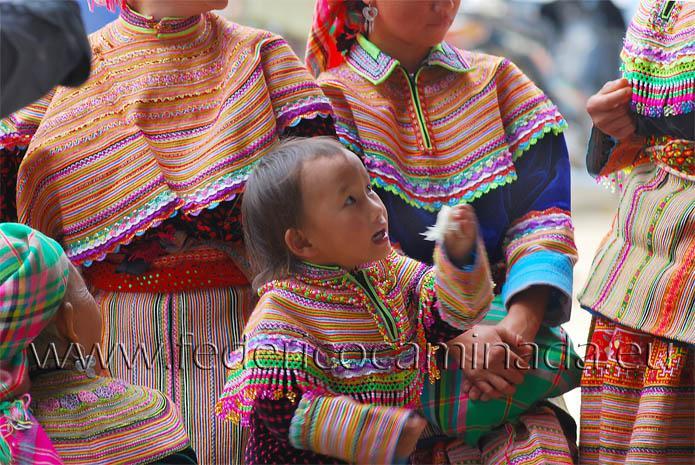 Flower Hmong, Bac Ha, Lao Cai, Sapa, Vietnam