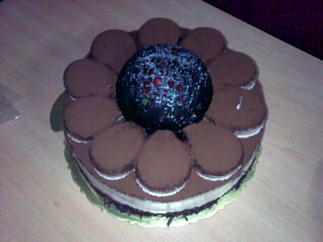 朋友鸟巢生日蛋糕  用手机拍摄 (爱拍网 http://ipai.cn/photologs/4003)