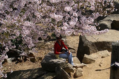 Blossom Hike