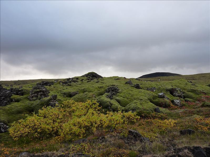 islandijos gamtovaizdis
