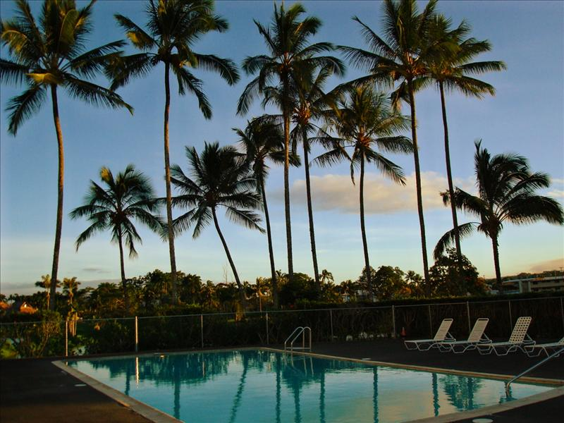 Hilo - Our pool