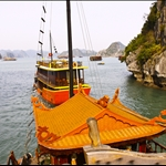 in the Halong Bay