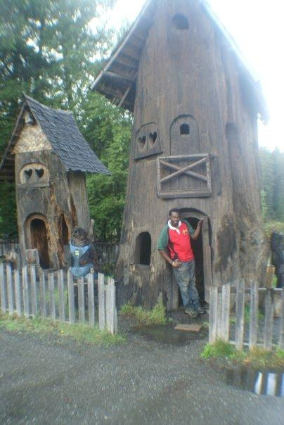 Real Tree-Houses