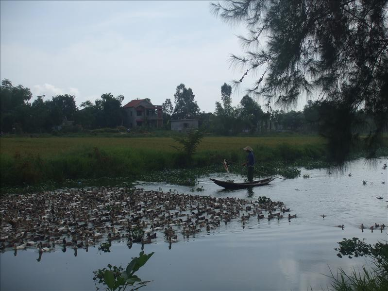 Hue Countryside