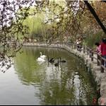 西郊公园、上海